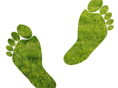environmental footprints